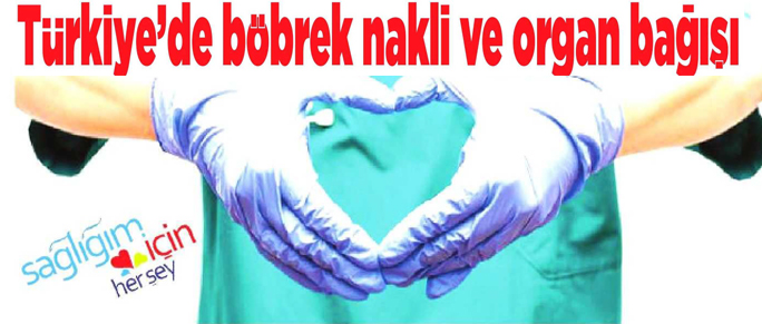 türkiyede_organ_bagisi